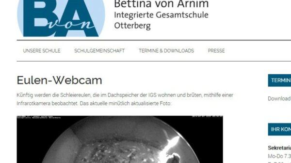 Eulen Webcam Pfalh